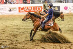 ศึกษากีฬาม้า