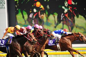 สนามแข่งม้าโตเกียว